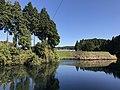 Shimono Pond 20171106-2.jpg