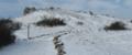 Shleifhausen winter snow.tif