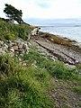 Shore near Bruckless Harbour - geograph.org.uk - 920804.jpg