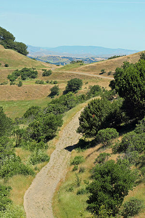 Robert Sibley Volcanic Regional Preserve - A view from Round Top