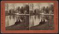 Silver Lake, Greenwood Cemetery, by J. W. & J. S. Moulton.png