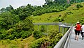 Singapore Southern Ridges Hilltop Walk 02.jpg