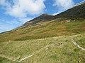 Slopes of Sgorr nam Fiannaidh - geograph.org.uk - 1498401.jpg