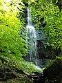 Small Waterfall in Calderglen - geograph.org.uk - 919419.jpg