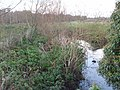 Smestow Brook near Prestwood - geograph.org.uk - 1063030.jpg