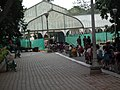 Snap from Lalbagh Flower Show Aug 2013 7840.JPG