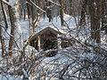 Snow14Slovakia3.JPG