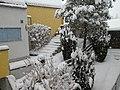 Snow (305234205).jpg