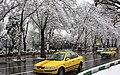Snowy day of Tehran - 7 March 2013 01.jpg