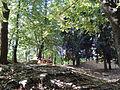 Sosta nel parco.JPG