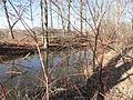 South Hadley Canal - Hadley Falls Canal Park - DSC04450.JPG
