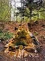 Springbrunnen Haibach.jpg