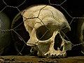 St Leonard, Hythe, the ossuary 2.jpg