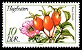 Stamps of Germany (DDR) 1978, MiNr 2287.jpg