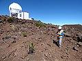 Starr-161102-0028-Dubautia menziesii-with Kim view PanStarrs-Science City-Maui (31327082055).jpg
