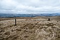 Start of descent of Whing towards Sanquhar - panoramio.jpg