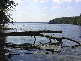 Rheinsberg Lake Region - Lake Stechlin, best-known lake in the Rheinsberg Lake Region