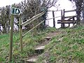 Steps and stile, Ashmore - geograph.org.uk - 1758245.jpg