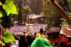 Stern Grove Festival - Seu Jorge at the Stern Grove Festival