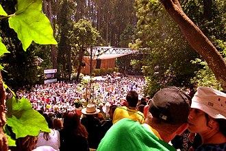 Stern Grove Festival - Seu Jorge at the Stern Grove Festival
