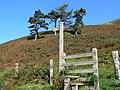 Stile and Footpath to Llyn Lluncaws - geograph.org.uk - 978784.jpg