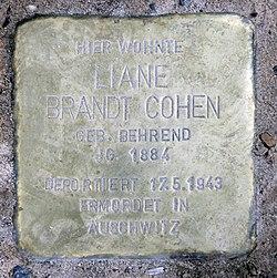 Photo of Liane Brandt Cohen brass plaque
