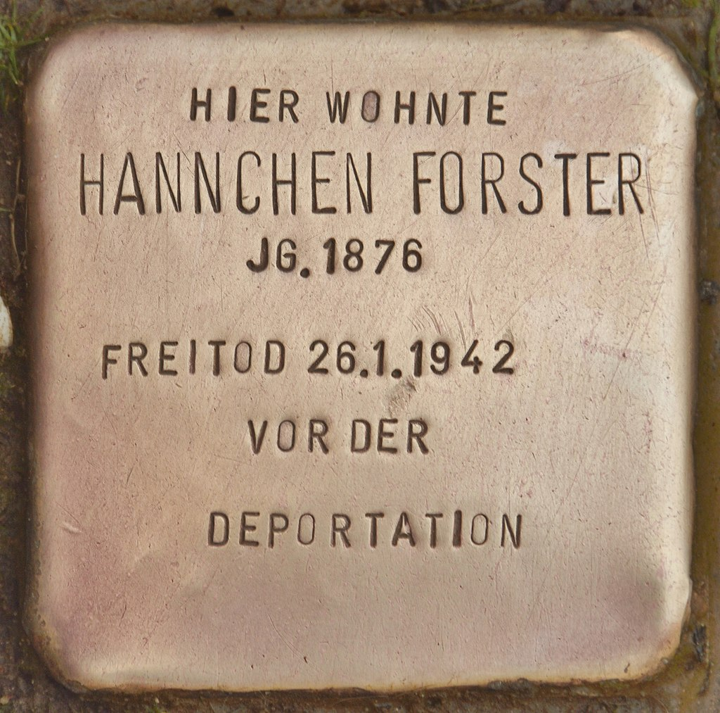 Stolperstein für Hannchen Forster (Schnaittach).jpg
