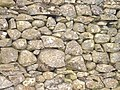 Stone Wall near Sykes - geograph.org.uk - 1503229.jpg