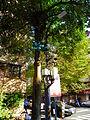 Street Light and Security Cameras in Alley 25, Lane 325, Jiankang Road, Taipei 20131201.jpg