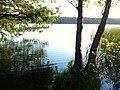 Strzeszynskie Lake Poznan 78.jpg