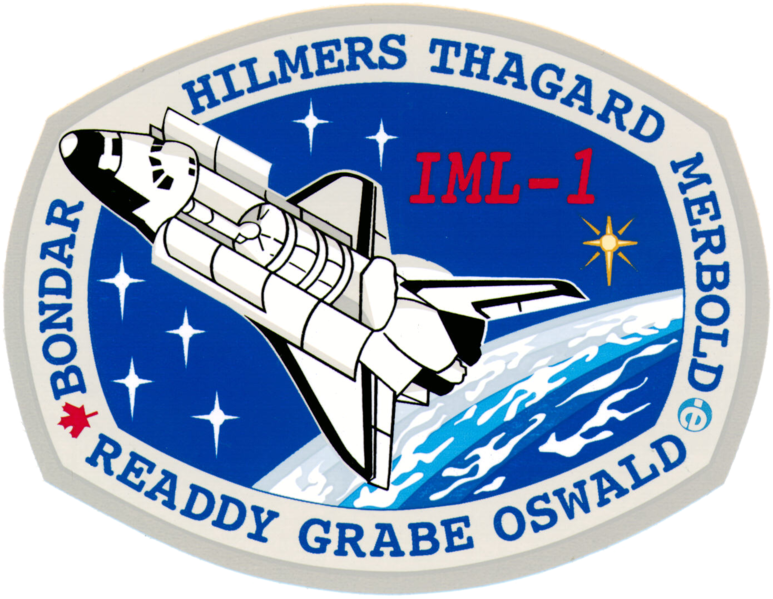 Fil:Sts-42-patch.png