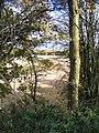 Stubble and Blind Lane - geograph.org.uk - 1037921.jpg