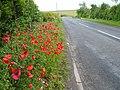 Sutton Lane - geograph.org.uk - 473759.jpg