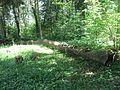 Suvieko sen., Lithuania - panoramio (23).jpg
