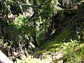 Swiss National Park 129.JPG