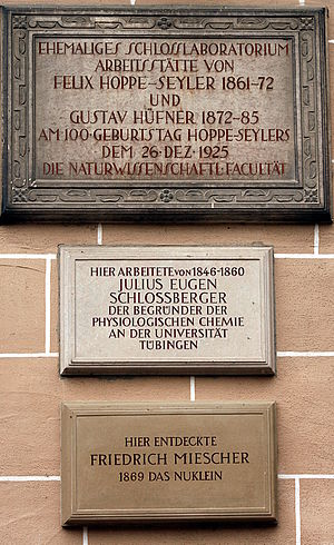 Julius Eugen Schlossberger - Memorial plaque in Tübingen.
