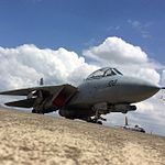 TGI(F-14) everybody. -avgeek -planespotting -Pilot -Fly -Jet (14167754303).jpg