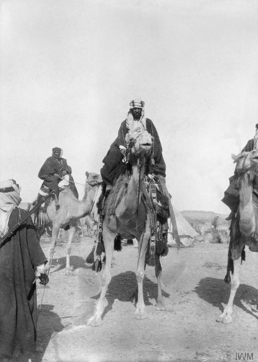 T E Lawrence and the Arab Revolt 1916 - 1918 Q59157