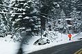 Tahoe Snow Storm (5752995848).jpg