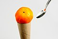 Tangerine1.jpg
