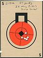 Target 22mag Striker.jpg