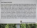 Tauler Informatiu. Escut de la família Almúnia , picat durant la Segona Germania. El Ràfol d'Almúnia (Marina Alta - País Valencià).jpg