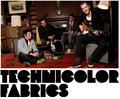 Technicolorfabrics.PNG