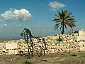 Tell Megiddo Preservation 2009 043.JPG