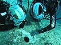 Tessa Gelisio intervista subacquea al direttore della AMP di Capo Caccia - archivio Marco Busdraghi AHO.jpg
