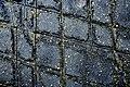 Tessellated Pavement 08.jpg