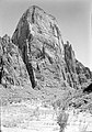 The Great White Throne, with planting along Virgin River riverbed in foreground (revegetation project). ; ZION Museum and (f7b658774e734ae79c249a390e460a37).jpg
