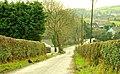 The Listooder Road near Crossgar - geograph.org.uk - 1135858.jpg