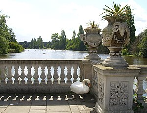 The Serpentine - The Long Water from the Italian Garden. Large numbers of mute swans nest in this area.