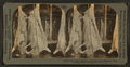 The last process in dressing beef - washing with boiling water. Chicago, Ill., U.S.A, from Robert N. Dennis collection of stereoscopic views.png
